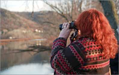 A woman watches tundra swans.