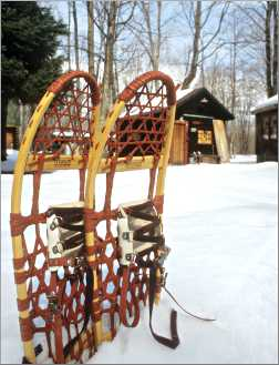 Snowshoes at Bear Track cabins.