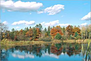 Fall color along a lake near Cable.
