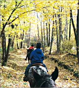 Horseback riding in northwest Wisconsin.