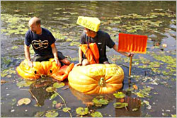 Pumpkin regatta in Cedarburg.