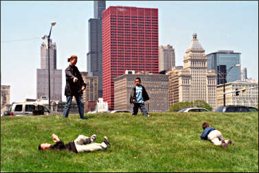 Kids roll down grass in Chicago.