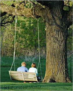 Couple sitting in a swing underneath oak tree