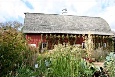 Heritage Farm barn at Seed Savers.