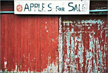 Apples for sale sign in Door County.