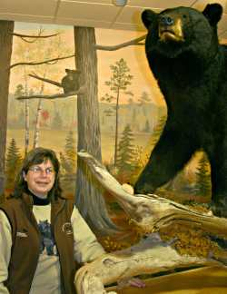 Curator Donna Phelan at the bear center.