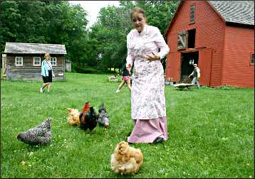 Feeding chickens at Historic Forestville.