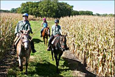 A trail ride in Fort Ridgely State Park.