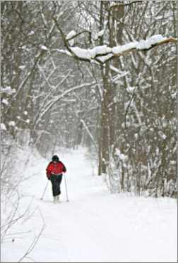 A skier works her way up a hill  in Frontenac State Park.