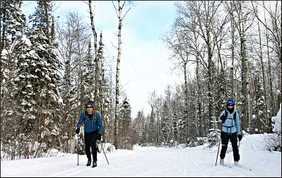 Cross-country skiers.