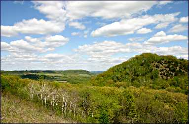 Goat prairie in Minnesota bluff country.