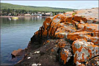 Lichen covers rocks in Grand Marais.