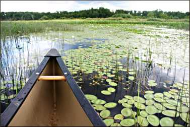 Canoeing at Crex Meadows.