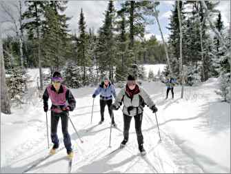 Skiers glide along trails at Golden Eagle on the Gunflint Tr