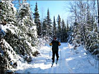 Skiing on the Lace Lake Trail.