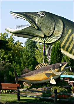 The giant muskie at the Hayward Fishing Museum.