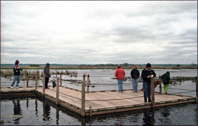 A floating boardwalk on Horicon Marsh.