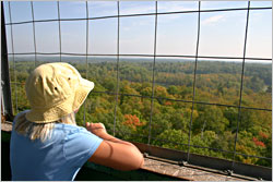 The view from Itasca's fire tower.
