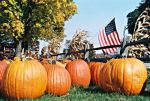 In fall, Door County produces plenty of pumpkins.