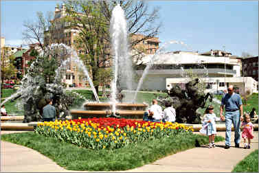 Tulips around a fountain in Kansas City.