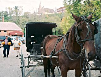 An Amish horse and buggy waits at the Lanesboro farmers mark