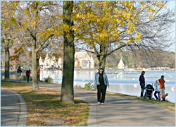 Walking around Lake Harriet in fall.
