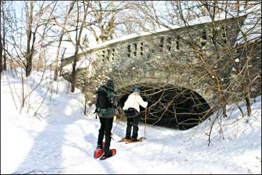 Bridge on Minnehaha Creek.