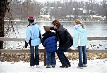 A family watches swans in Monticello.