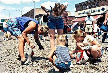 Hunters look for agates at Moose Lake's stampede.