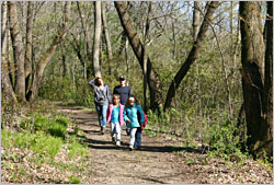 A family hiking at Nerstrand Big Woods.