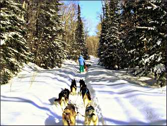 Mushing in Superior National Forest.