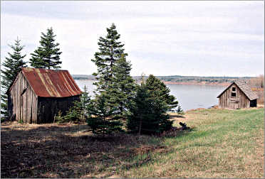 Shacks along Minnesota's Scenic 61.