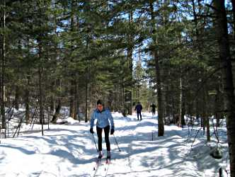 Skiing on the Northwoods Trail.