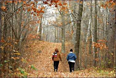 Fall hiking near Pine River.