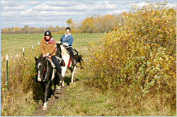 Horseback riding in autumn.