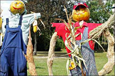 Scarecrows in a contest.