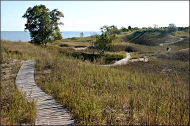 Dunes at Kohler-Andrae State Park.