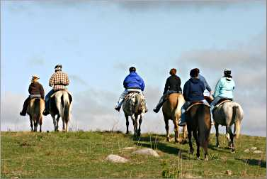 Horseback riders crest a hill.