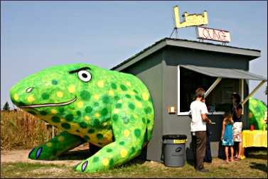 The Lizard Lounge at Franconia Art Park.