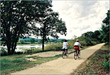 Bicyclists ride the Great River Trail near Trempealeau.