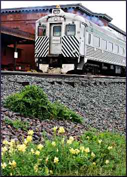 Train at the Two Harbors depot.