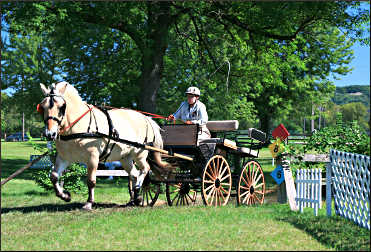 A carriage race at Villa Louis.